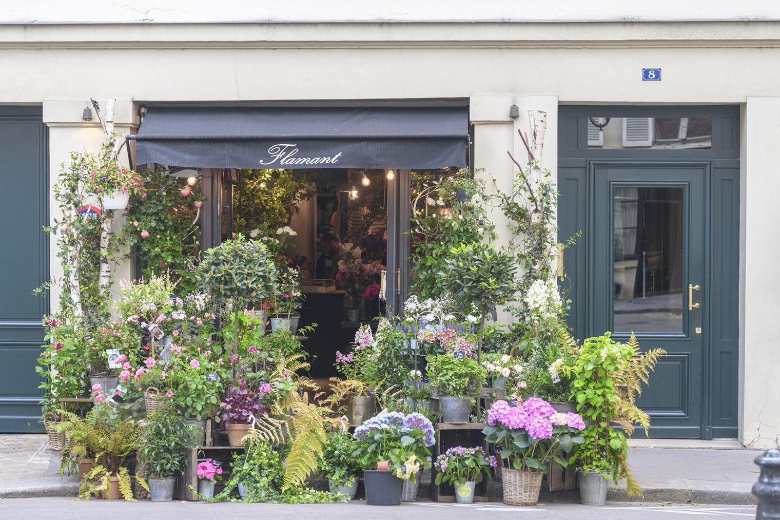 Flowers outside the Flamant Florist Shop in Paris photographed by Georgianna Lane