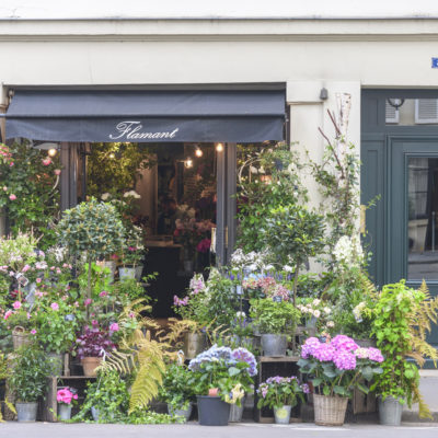 Floristry Industry Insight – Flowers on the Streets of Paris