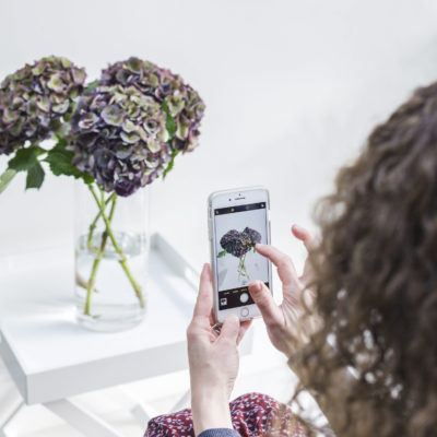 Instagram Advice for Florists   A-Z : C   Content