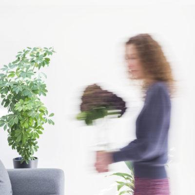Instagram Advice for Florists   A-Z : F   Followers