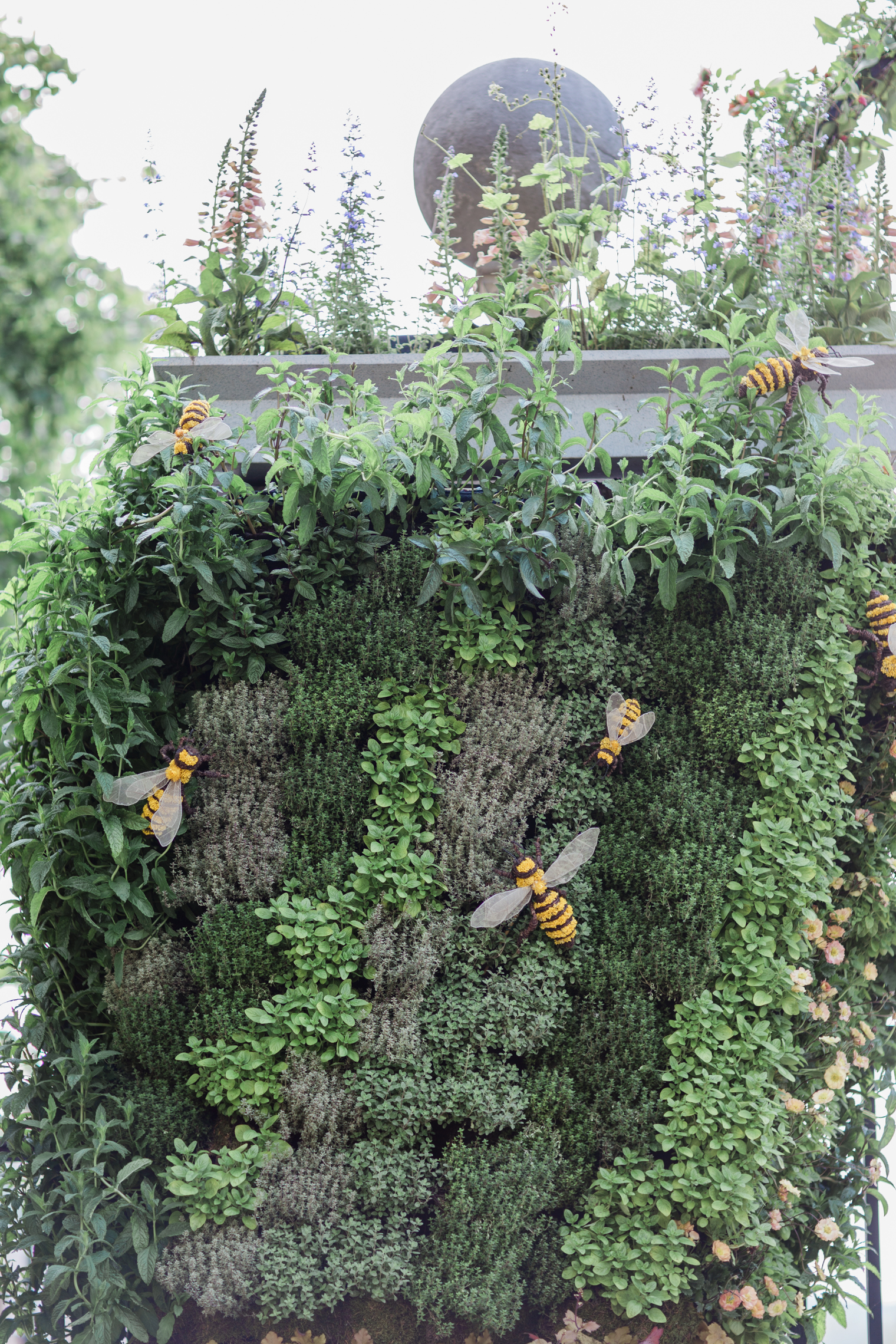 RHS Virtual Chelsea Flower Show | Floristry Industry Insight