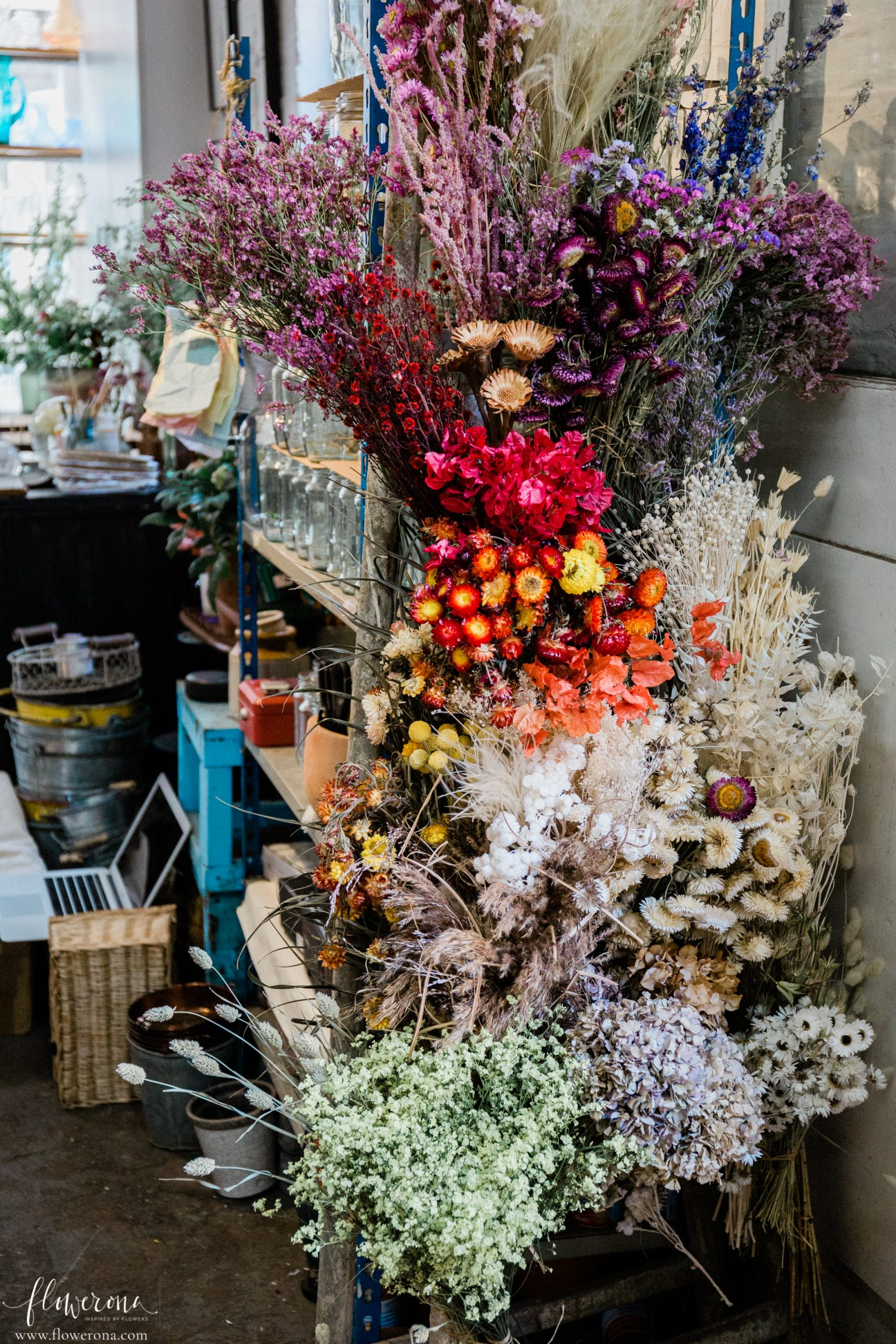 Dried Flowers at the JamJar Flowers Studio