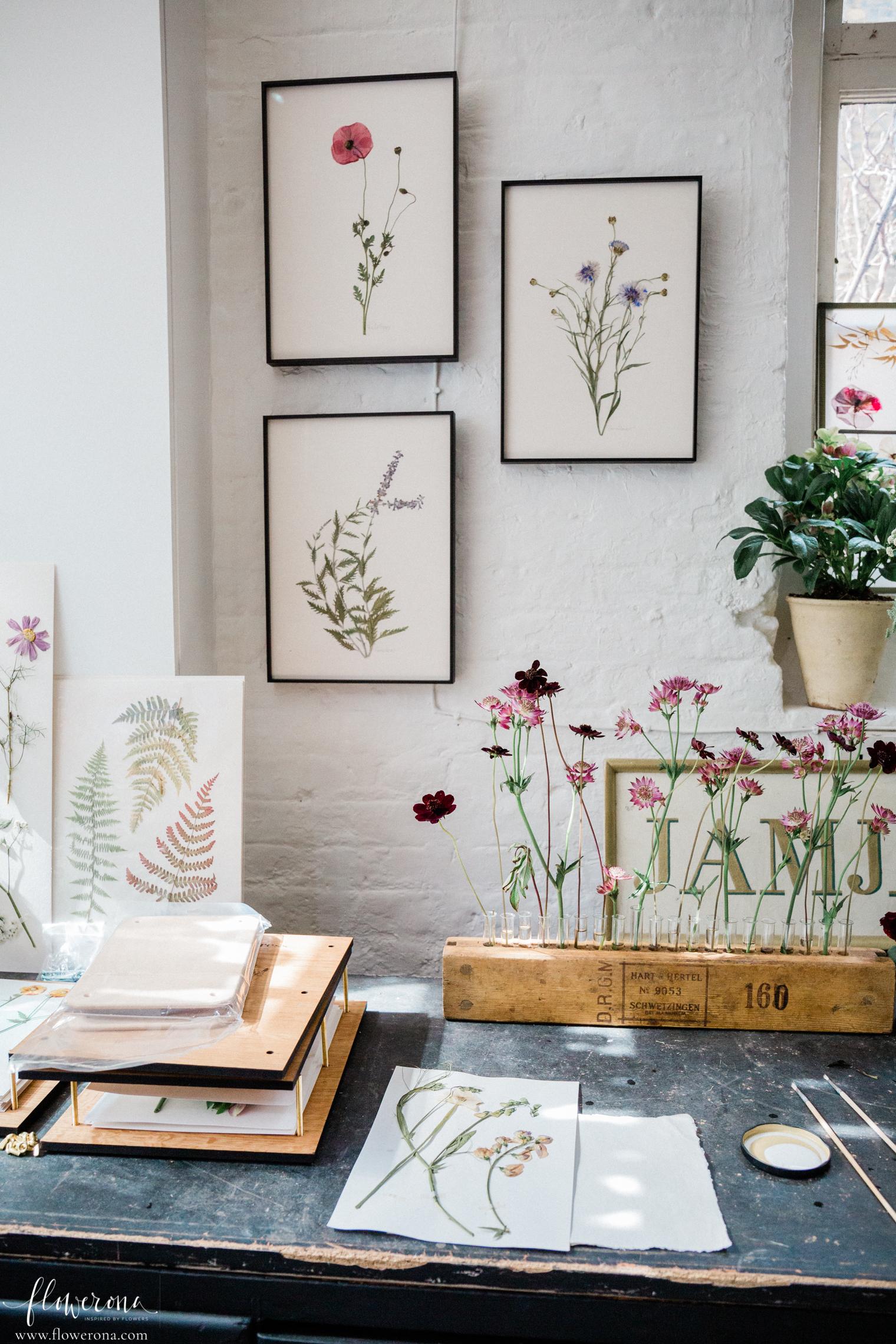 Flower Pressing & Cyanotype Print Workshop with JamJar Edit