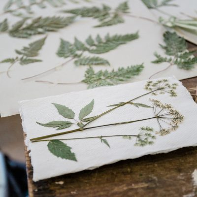 Flower Pressing & Cyanotype Print Workshop with JamJar Edit | Part 2