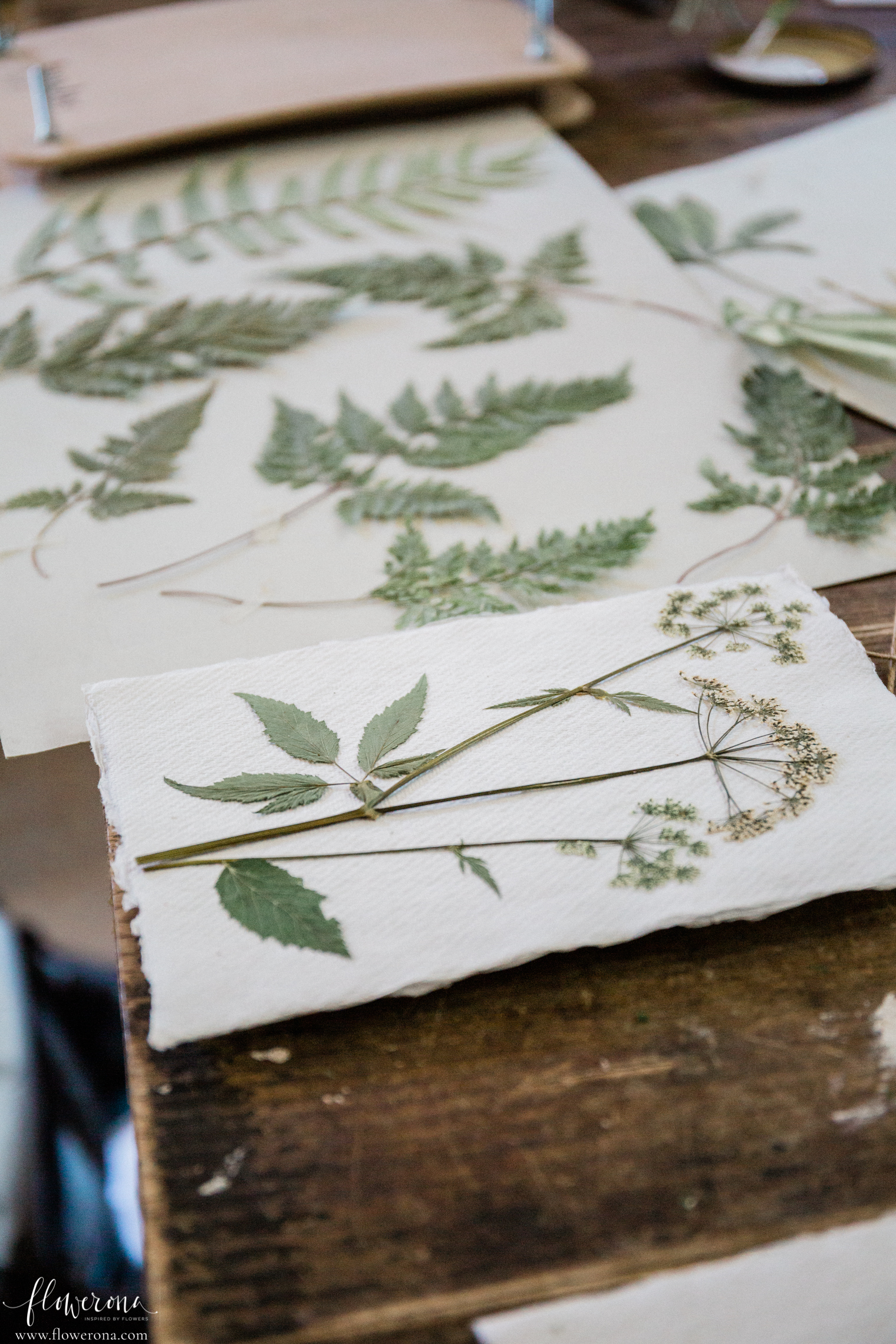 Pressed Flowers & Foliage at the Flower Pressing & Cyanotype Print Workshop with JamJar Edit