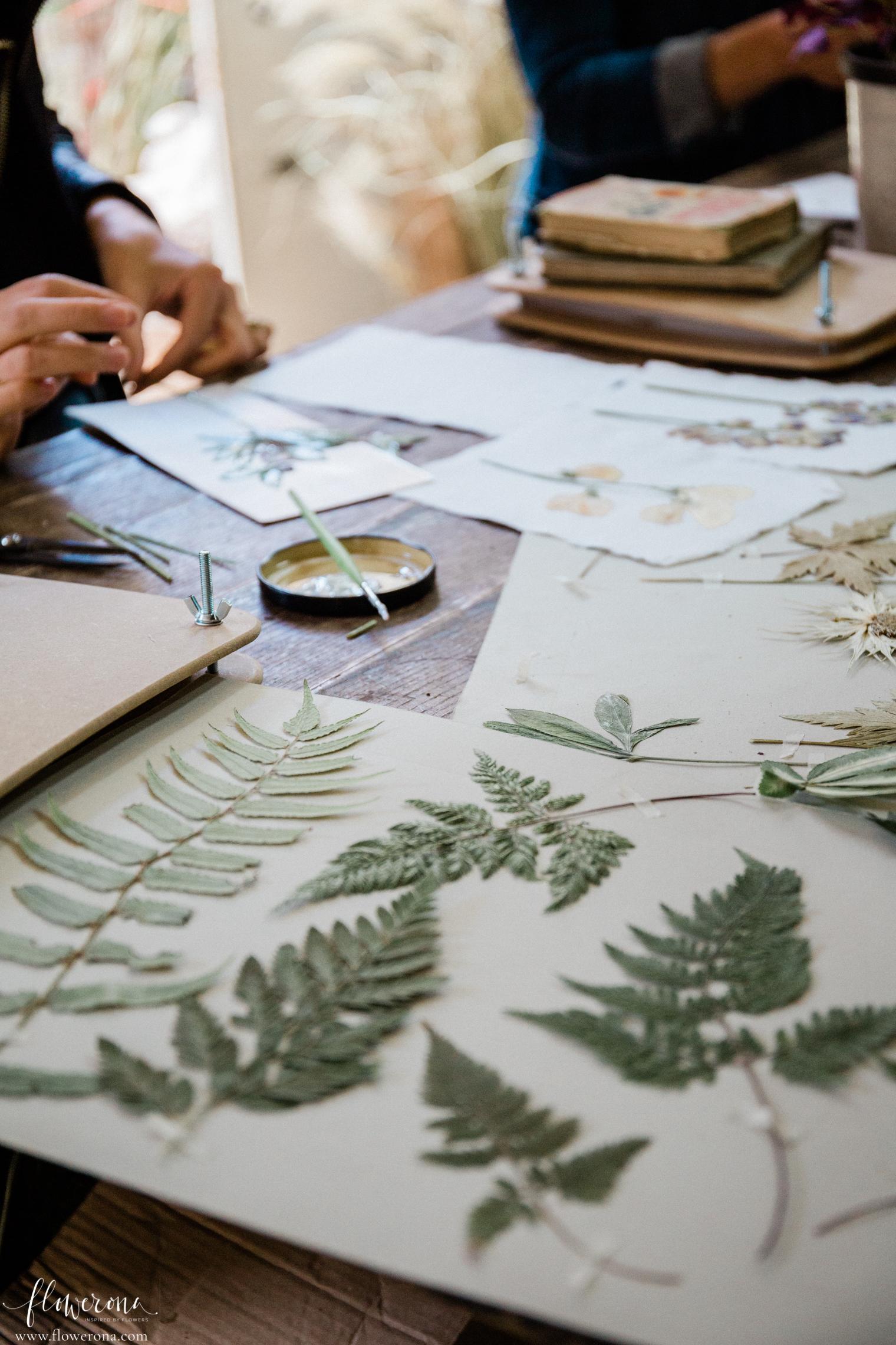 Flower Pressing & Cyanotype Print Workshop