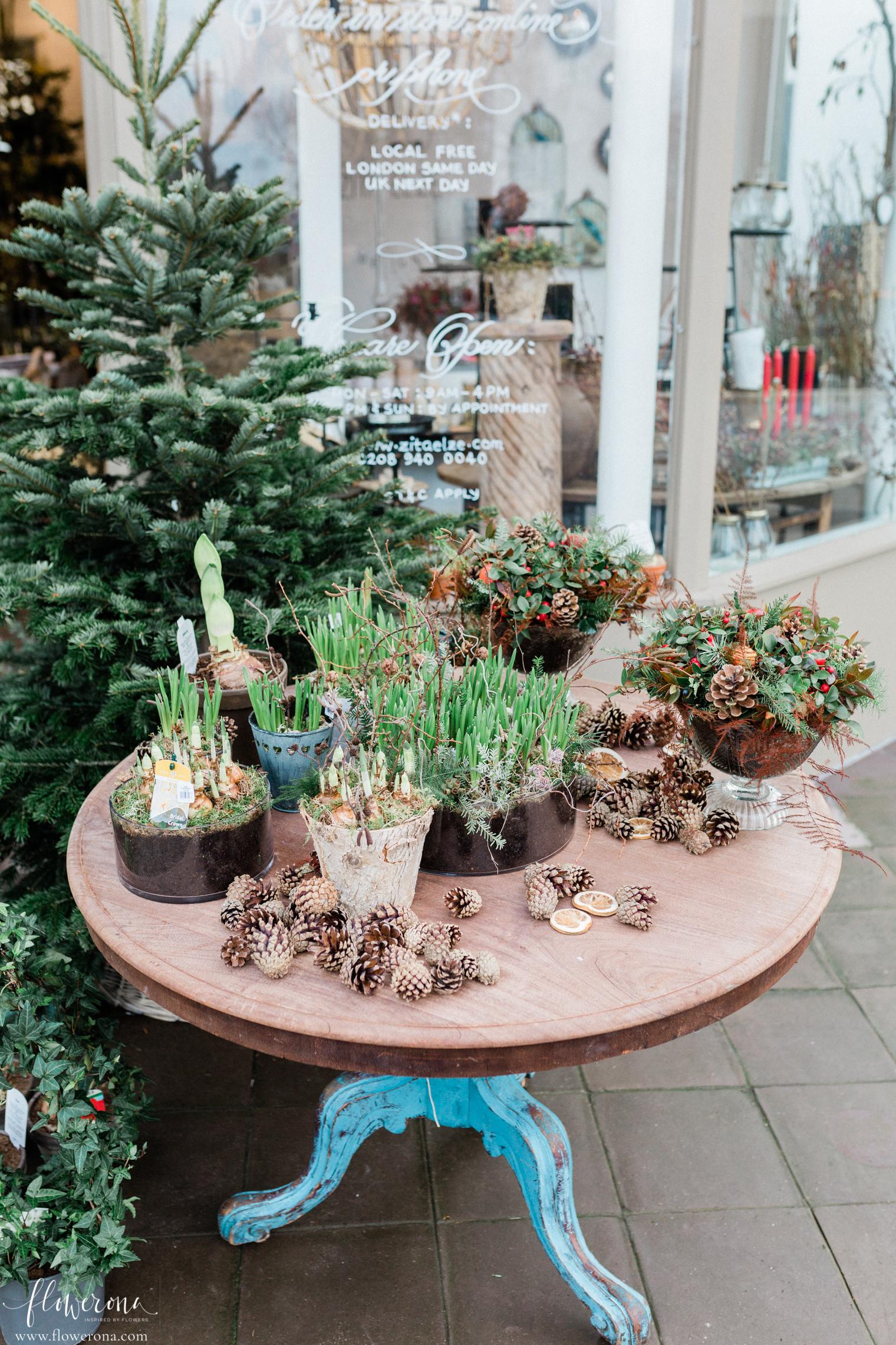Zita Elze's flower shop