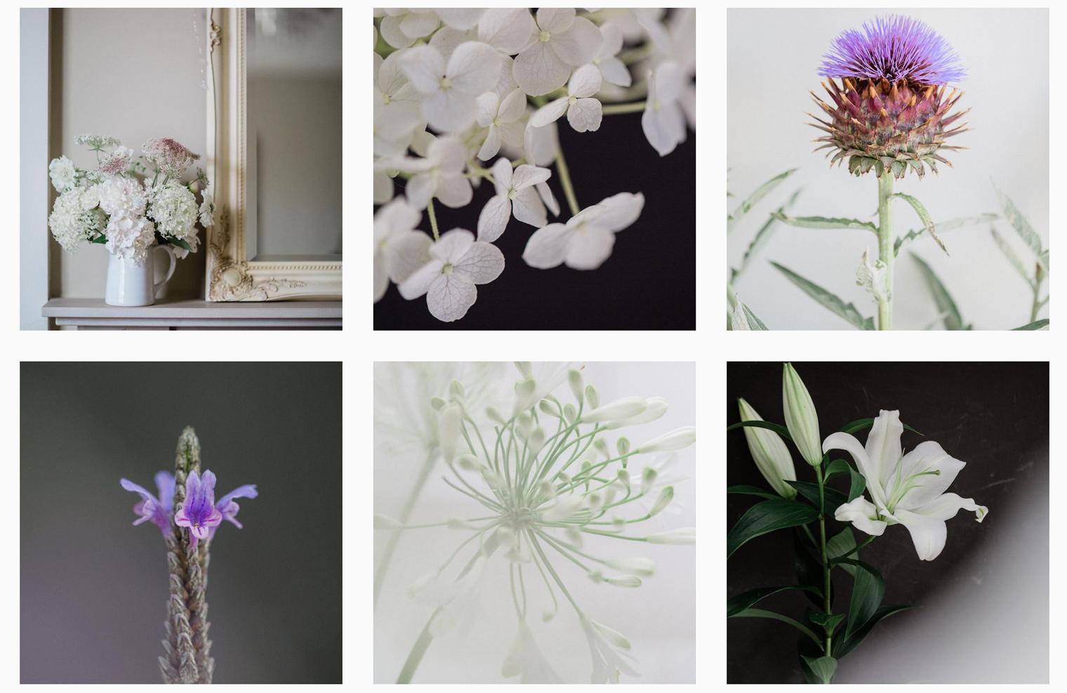 Flowerona Instagram Account