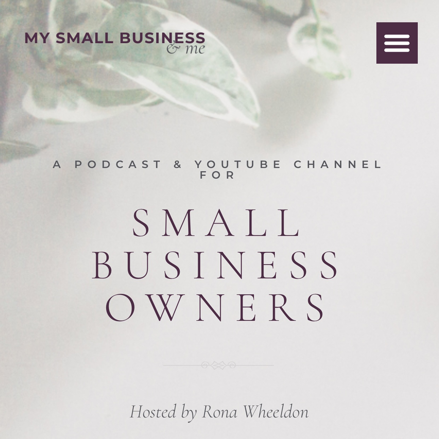 A Podcast & YouTube Channel for Small Business Owners - My Small Business & Me