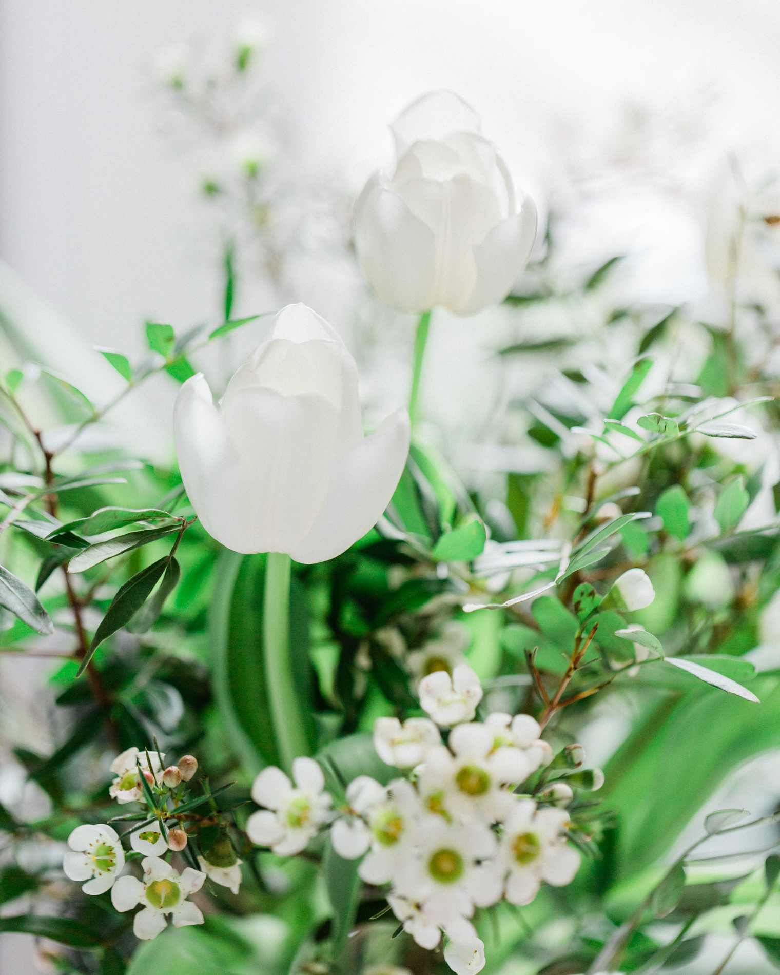 Your Instagram Makeover Part 1 | White Flowers