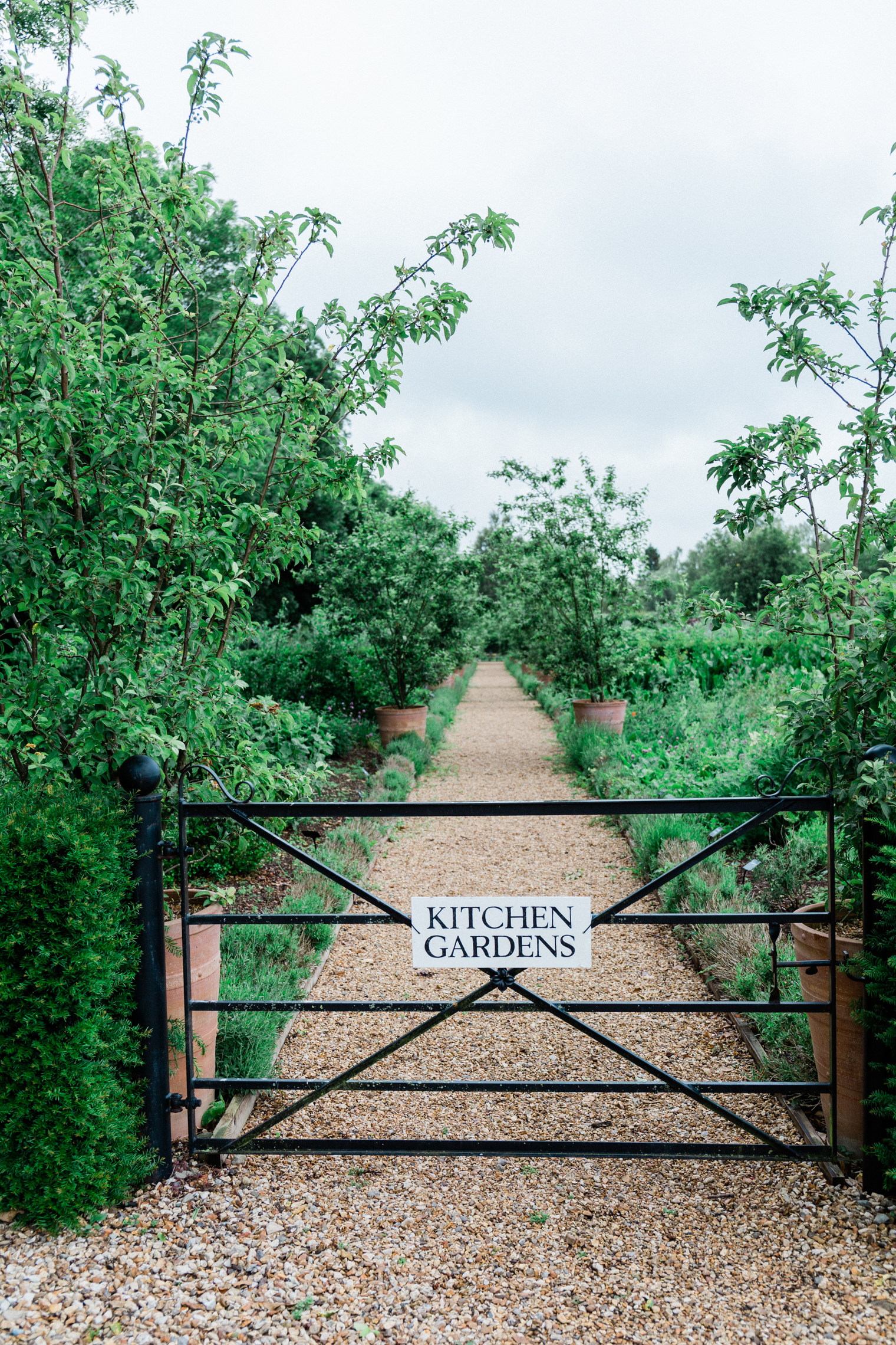 Kitchen Garden at Thyme