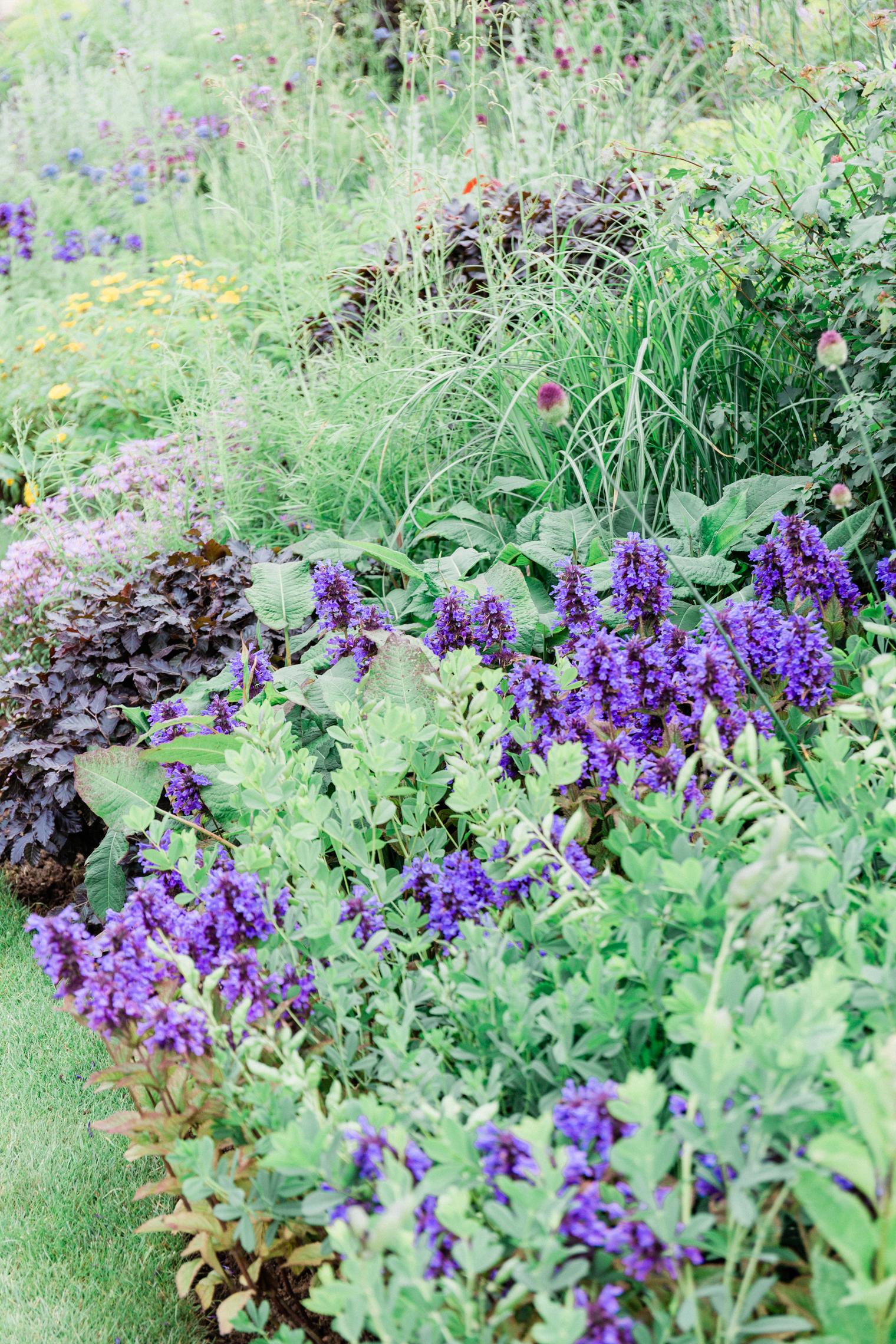 The RHS Garden for a Green Future   RHS Hampton