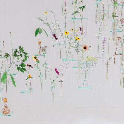 Charlotte Smithson   RHS Chelsea Flower Show 2021